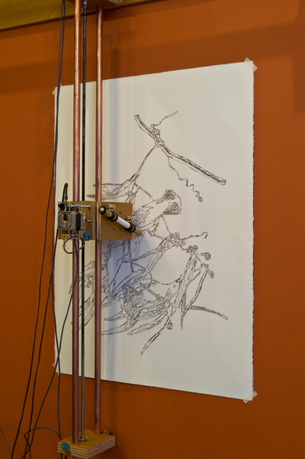 Drawing Machine: Bird's of America, 2010, detail
