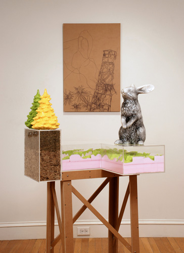 Lookout Rabbit, 2008